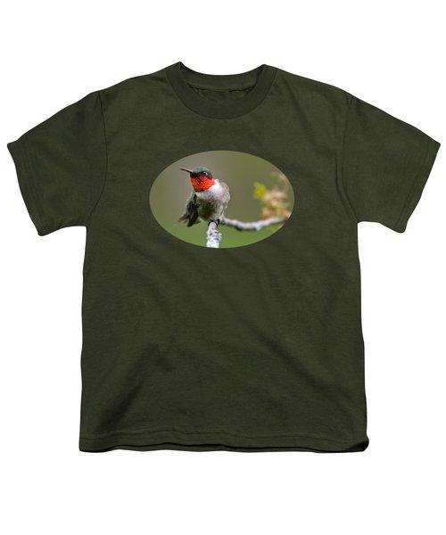 Wild Birds - Ruby-throated Hummingbird Youth T-Shirt by Christina Rollo