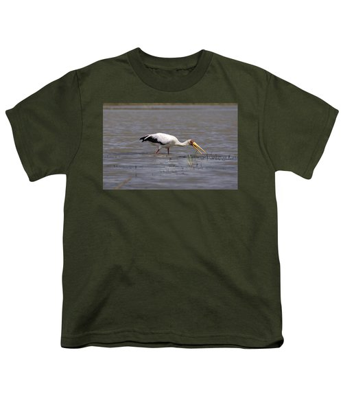 Yellow Billed Stork Wading In The Shallows Youth T-Shirt by Aidan Moran