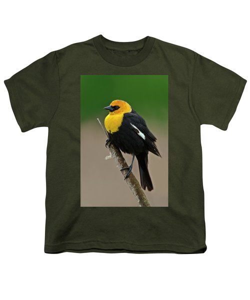 Yellow Headed Blackbird Youth T-Shirt