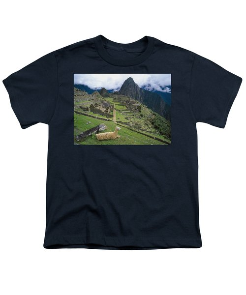 Llama At Machu Picchus Ancient Ruins Youth T-Shirt by Chris Caldicott