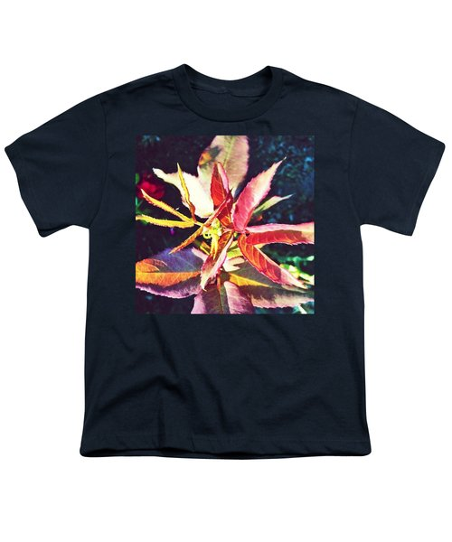 Rosy Glow - Rose Leaves Afternoon Light Youth T-Shirt