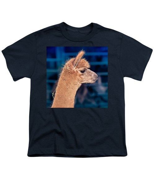 Alpaca Wants To Meet You Youth T-Shirt by TC Morgan