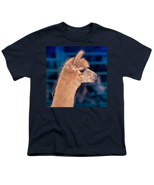 Alpaca Wants To Meet You Youth T-Shirt