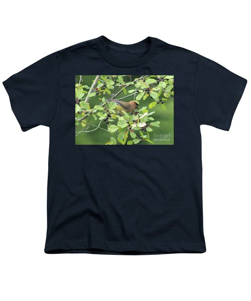 Cedar Waxwing Eating Berries Youth T-Shirt by Maili Page