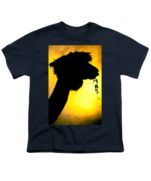 Endless Alpaca Youth T-Shirt by TC Morgan