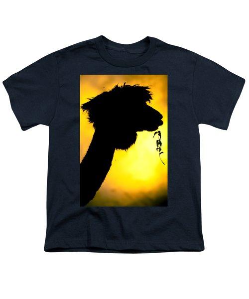 Endless Alpaca Youth T-Shirt