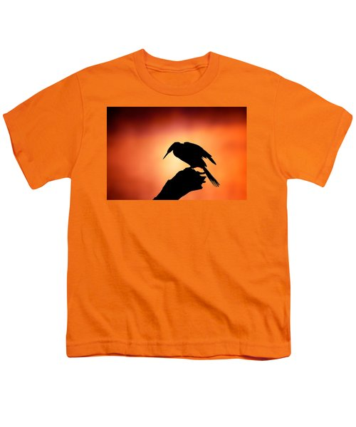 Darter Silhouette With Misty Sunrise Youth T-Shirt