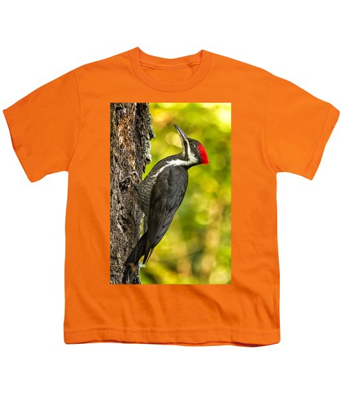 Female Pileated Woodpecker No. 2 Youth T-Shirt