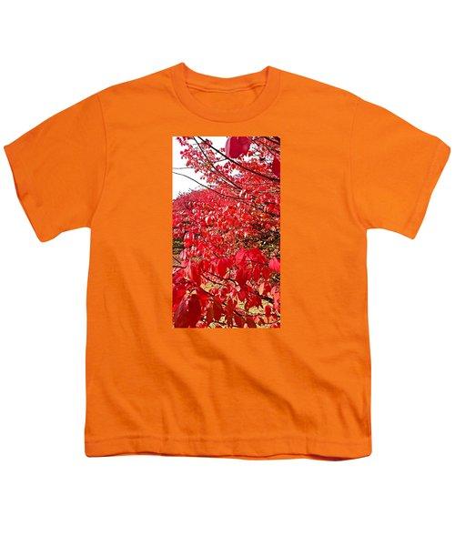 Ablaze Youth T-Shirt by Jana E Provenzano
