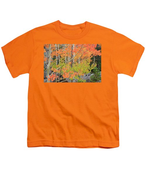Youth T-Shirt featuring the photograph Aspen Stoplight by David Chandler