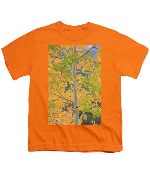 Youth T-Shirt featuring the photograph Aspen Watching You by David Chandler