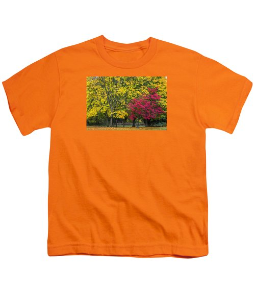 Autumn's Peak Youth T-Shirt by Jeremy Lavender Photography