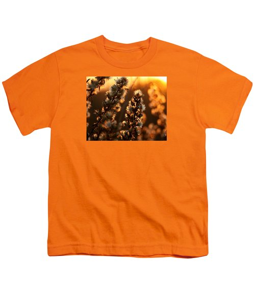 Goldenrod At Sunset Youth T-Shirt