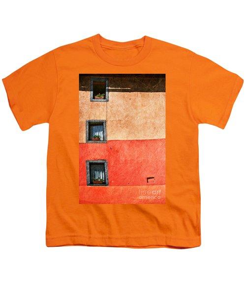 Three Vertical Windows Youth T-Shirt