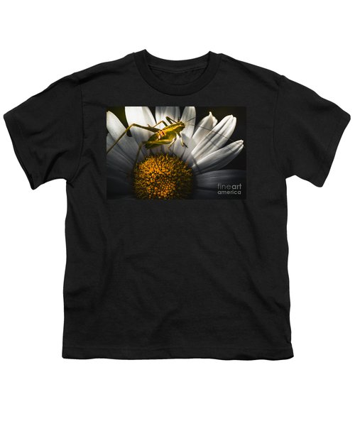 Australian Grasshopper On Flowers. Spring Concept Youth T-Shirt by Jorgo Photography - Wall Art Gallery