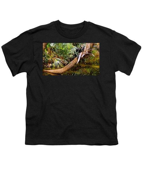 Oriental Darter Anhinga Melanogaster Youth T-Shirt