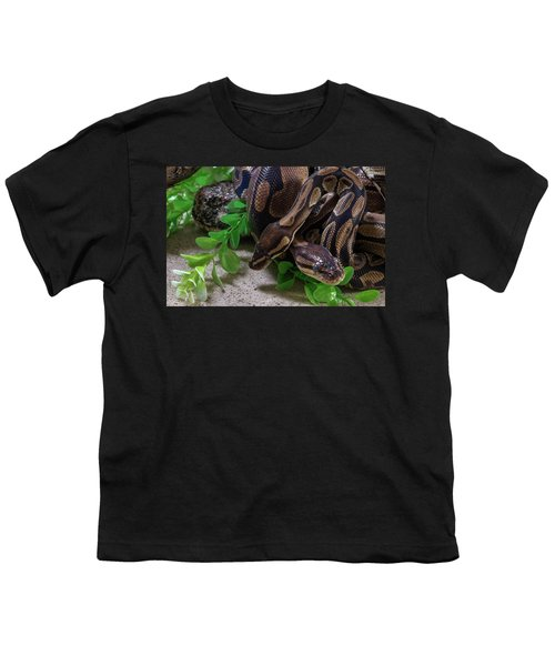 Two Burmese Pythons Python Bivittatus Youth T-Shirt