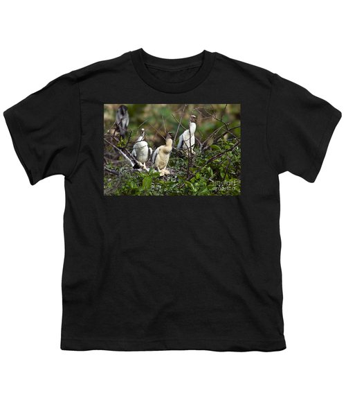 Baby Anhinga Youth T-Shirt by Mark Newman