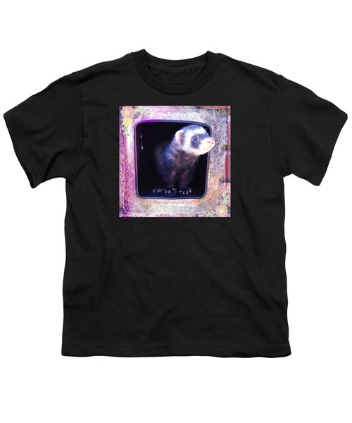 Airmail Ferret Youth T-Shirt by Anna Porter