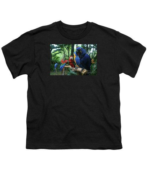 Aloha Kaua Aloha Mai No Aloha Aku Beautiful Macaw Youth T-Shirt by Sharon Mau