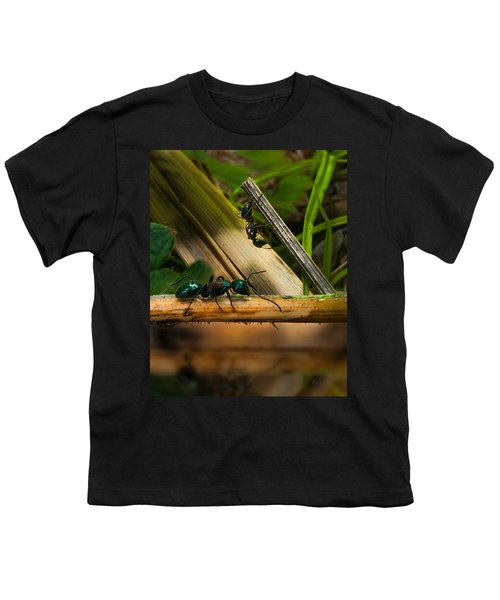 Ants Adventure 2 Youth T-Shirt