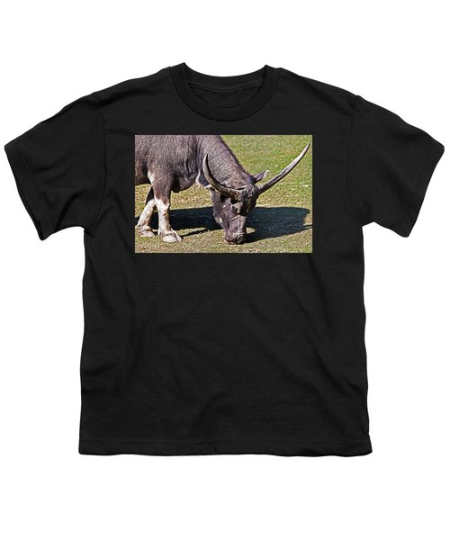 Asian Water Buffalo  Youth T-Shirt by Miroslava Jurcik