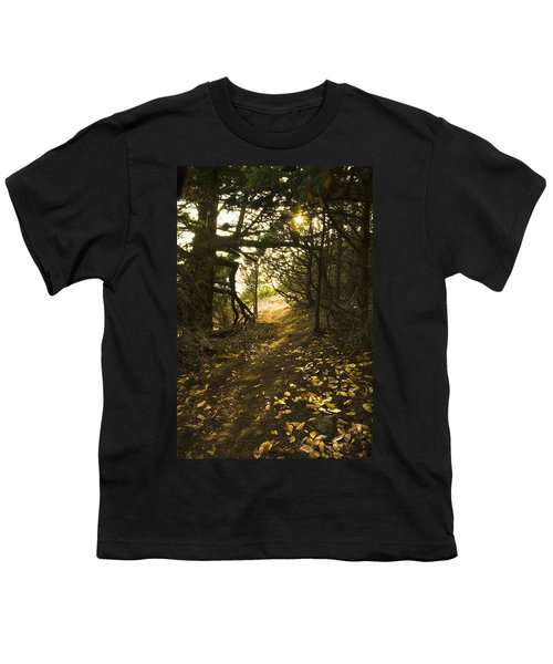 Youth T-Shirt featuring the photograph Autumn Trail In Woods by Yulia Kazansky