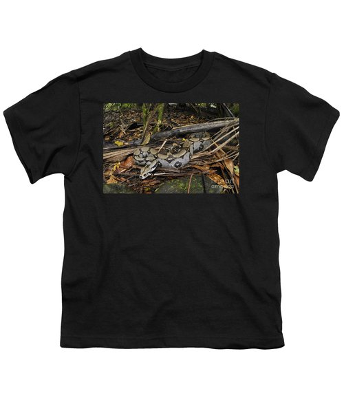 Boa Constrictor Youth T-Shirt by Francesco Tomasinelli