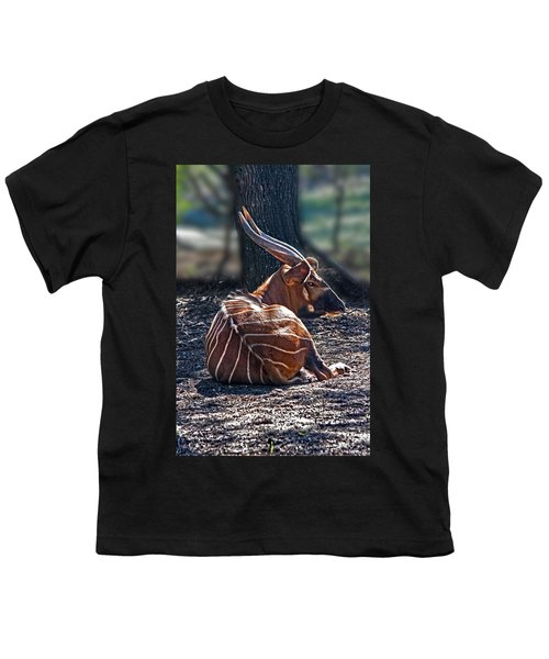 Bongo Youth T-Shirt by Miroslava Jurcik