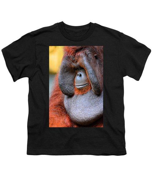 Bornean Orangutan Vi Youth T-Shirt by Lourry Legarde
