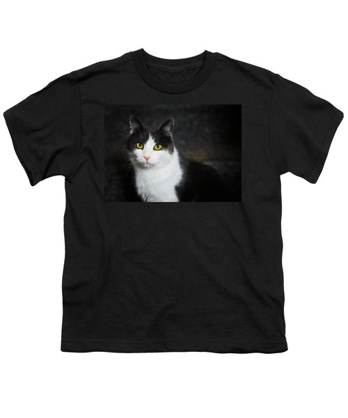 Cat Portrait With Texture Youth T-Shirt by Matthias Hauser