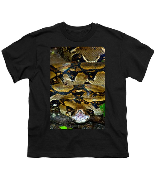 Close-up Of A Boa Constrictor, Arenal Youth T-Shirt by Panoramic Images