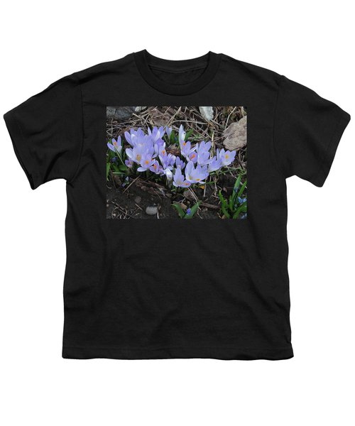 Early Crocuses Youth T-Shirt