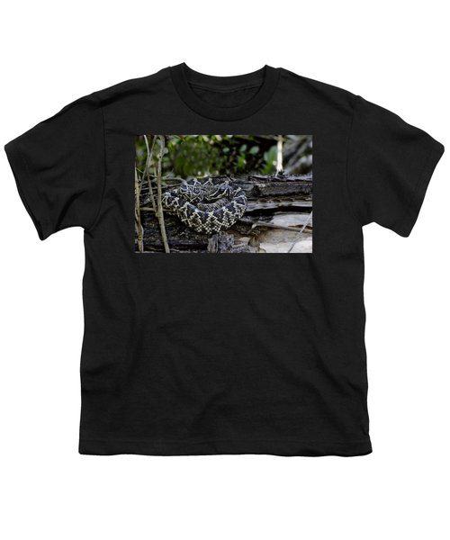 Eastern Diamondback-2 Youth T-Shirt by Rudy Umans