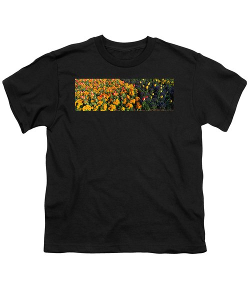 Flowers In Hyde Park, City Youth T-Shirt