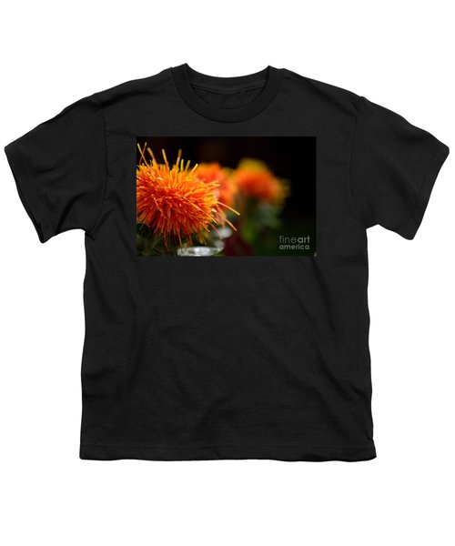 Focused Safflower Youth T-Shirt