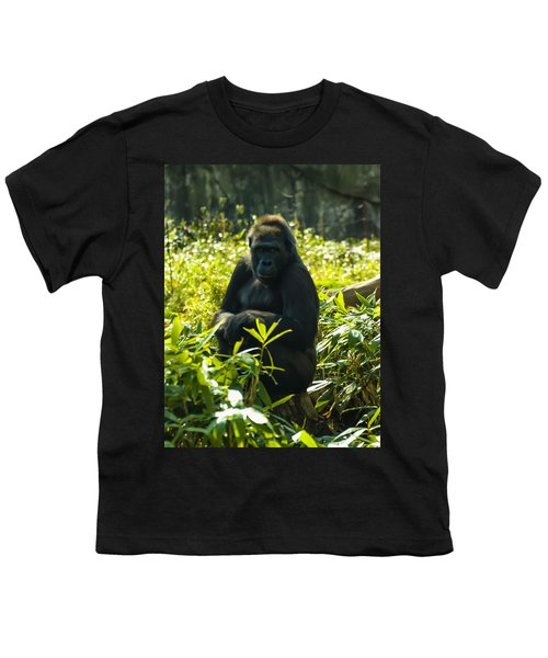 Gorilla Sitting On A Stump Youth T-Shirt