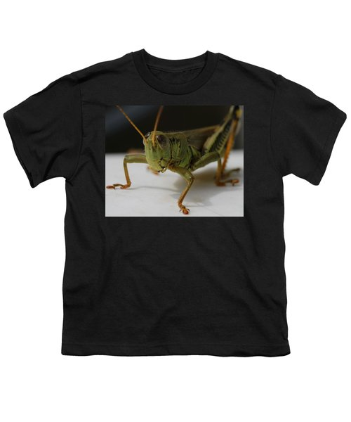 Grasshopper Youth T-Shirt by Dan Sproul