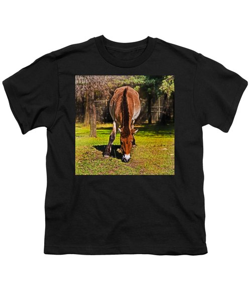 Grazing With An Attitude Youth T-Shirt