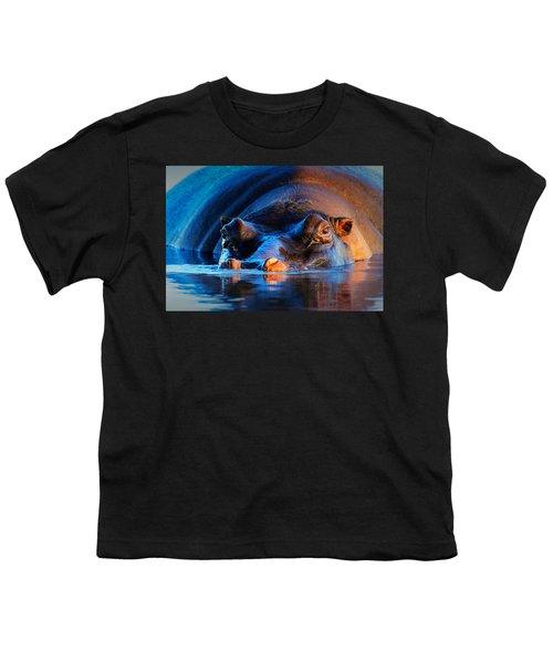 Hippopotamus  At Sunset Youth T-Shirt by Johan Swanepoel