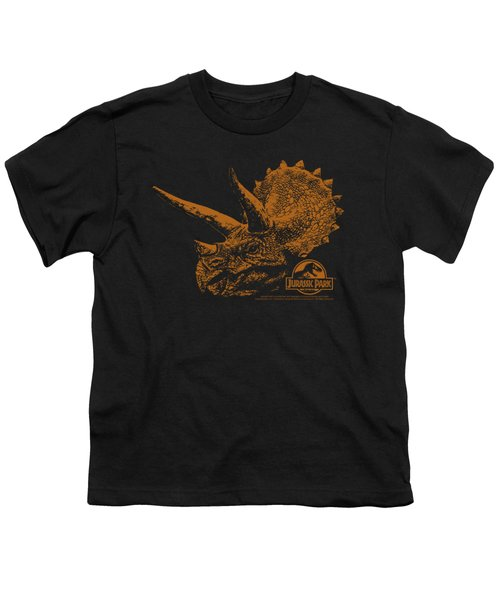Jurassic Park - Tri Mount Youth T-Shirt by Brand A