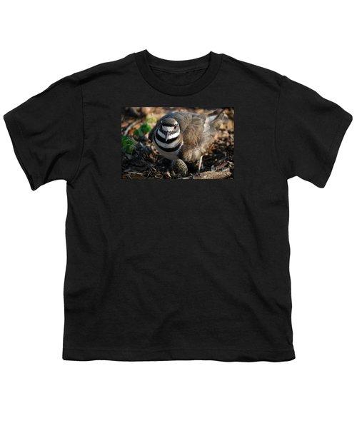 Killdeer Mom Youth T-Shirt by Skip Willits