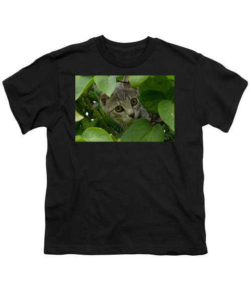 Kitten In The Bushes Youth T-Shirt