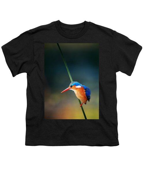 Malachite Kingfisher Youth T-Shirt by Johan Swanepoel