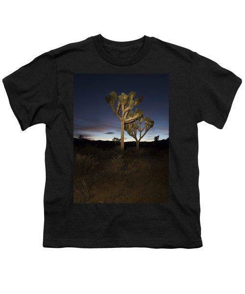 Night Light Painting Joshua Tree National Park Youth T-Shirt