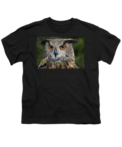Owl Bubo Bubo Portrait Youth T-Shirt