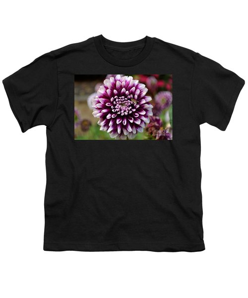 Purple Dahlia White Tips Youth T-Shirt