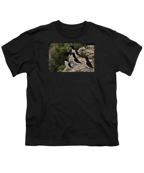 Razorbill Cliff Youth T-Shirt by Dreamland Media
