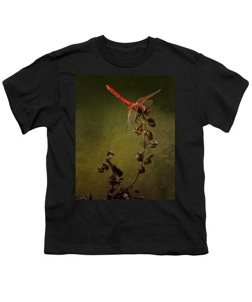 Red Dragonfly On A Dead Plant Youth T-Shirt