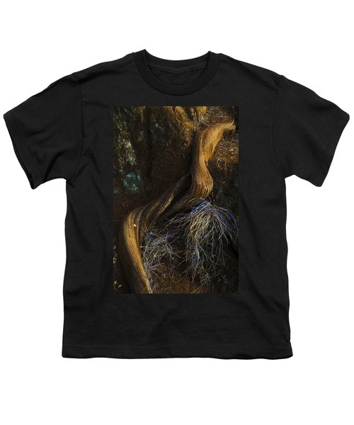 Tree Root Youth T-Shirt